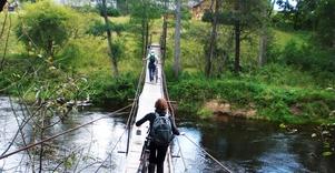 Bike tours in Dzukija National Park